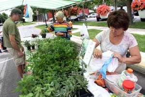 Vendors find profits, friendship, networking at farmers markets