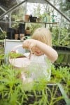 Greenhouses Provide Growing Opportunities for Enthusiasts of all Ages
