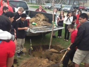 A tree grows at New Tech