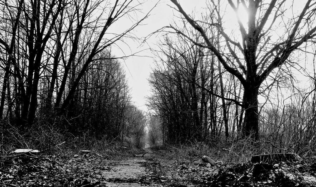 hoosier hauntings nwi has history of scary ghost stories haunted reeder road