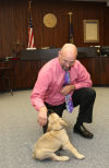 Judge Therapy dog to offer comfort to kids in juvenile detention