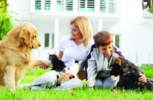 Affordable Pet Care at Home