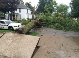 Trees, utility poles downed as storm slams region