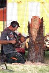 Mark Colp, wood carver at porter county fair