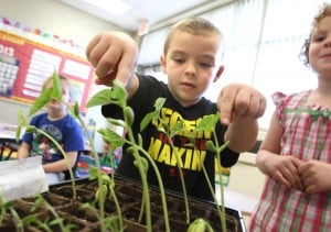 PNC early childhood education students get real-life experience