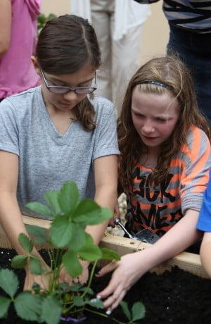 Garden a place for Valpo students to learn and grow