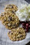 Food Healthy Lace Cookies