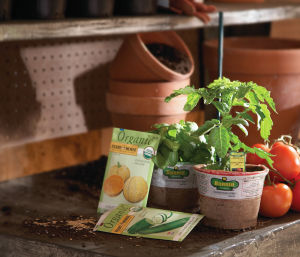 At Home: Growing your own