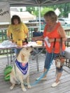 Canines help humans raise funds for cancer fight