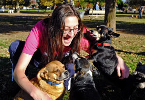Wags and barks speak volumes when talking to dogs