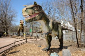 Tall tails: Brookfield Zoo offers family excitement from dining to dinosaurs