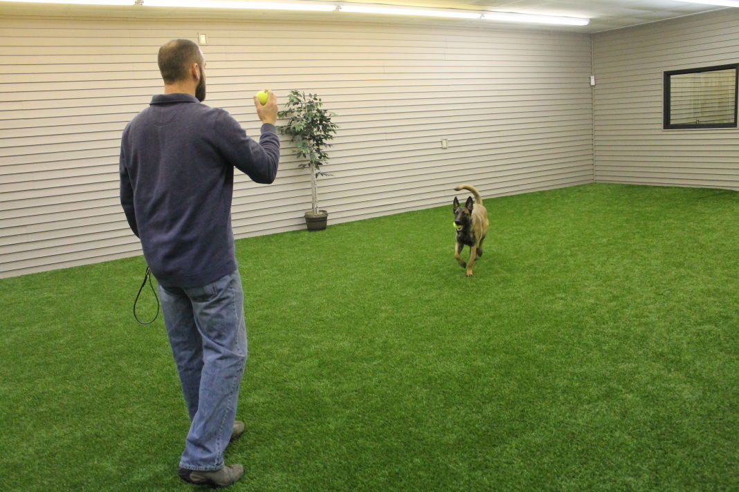 Valparaiso Couple Set To Open Luxury Dog Kennel Porter