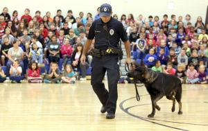 Griffith students have vested interest in police dog
