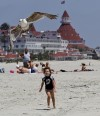 California's Coronado named nation's best beach