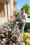 Fall is a good time to make landscaping upgrades (3)