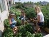 Growing Importance: Families share summer garden bounties for local food pantry cause