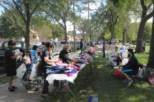 Market day: Buyers, sellers converge on Mann Park in Hegewisch
