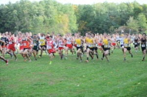Invitational brings the cross country masses to New Prairie