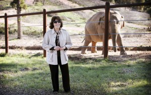 Lily Tomlin speaks up for elephants in documentary