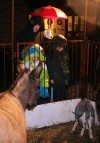 Live Nativity takes center stage at Hammond church