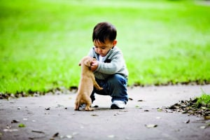 Earth-friendly ways to welcome babies and pets
