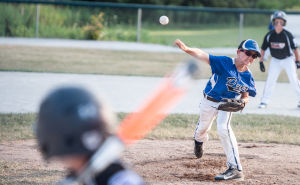 Dyer falls in state champion Little League game