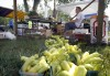 Portage Community Market opens