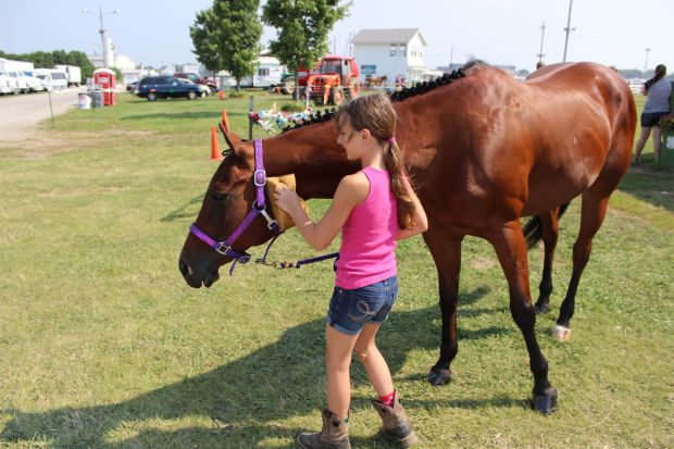 4-H horse families take a weeklong trip to the fair
