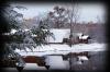 serenity snow