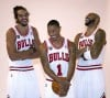 New Bulls ready to make their mark in the NBA