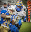 Bloom Township's Emmanual WIlliams prepares for a hit by Crete-Monee's Juawan Treadwell