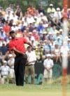 Tiger Woods to rest sore elbow, will skip AT&T National