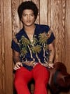 Bruno Mars bringing world tour to Chicago