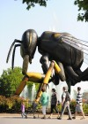 Gigantic Japanese Hornet Adorns Roosevelt Fountain at Brookfield Zoo in Summer 2012
