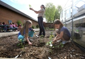 Students plant gardens to supply food for cafeteria meals, help teach healthier lifestyles