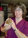 Volunteer helps rescue guinea pigs by providing TLC