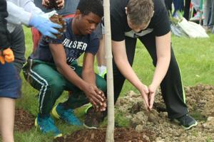 Students plant trees at St. Patrick School