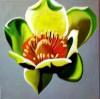 Hobart Arts League | Nicki Filarski
