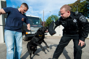 Police K-9 units growing in use in region