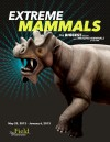 """Extreme Mammals"" at Chicago's Field Museum Through Jan. 6, 2013"