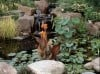 Gardening Water Features