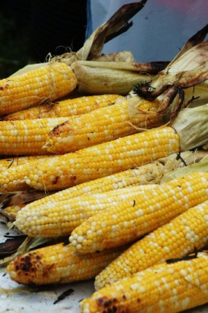 Summer Corn: It's Back