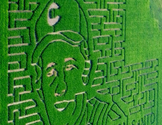 corn maze by david barber essay Corn maze david barber analysis essay biology essay the importance of shapes fitting together essay writing for b schools check out this essay by @karinsalvala at .