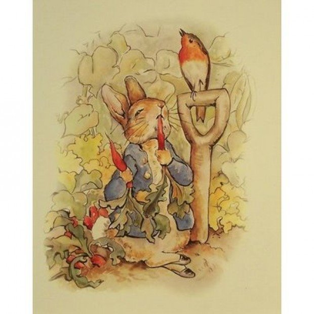 beatrix potter essays
