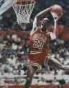 Michael Jordan, dunking