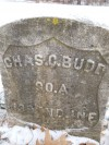 Charles C. Budd, 1843-1920