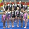 Midwest gymnasts earn state titles