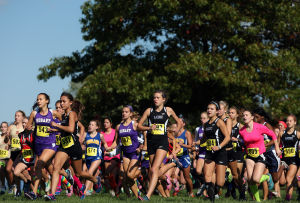 Gallery: Crown Point Cross Country Regionals, boys and girls