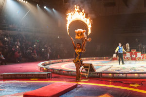 Orak Shrine Circus entertains 'the kid in all of us'