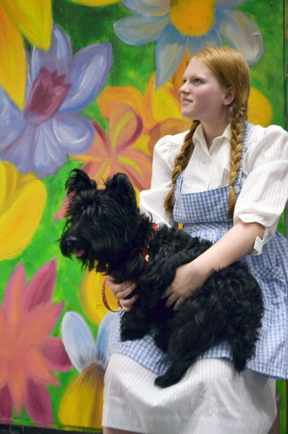 H F Summer Theatre Presents The Wizard Of Oz Homewood